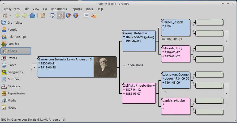 Pedigree view (version 4.0 and above)